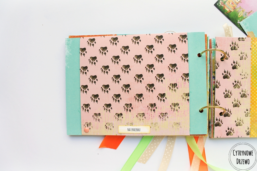 album ze zwierzakami