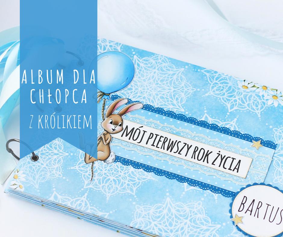 album krolik